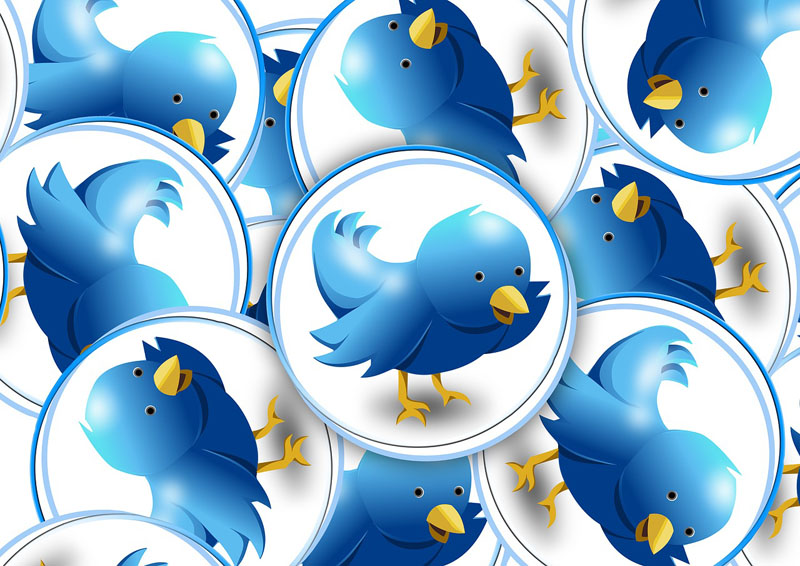 How To Build A Twitter Following With Intriguing Tweets